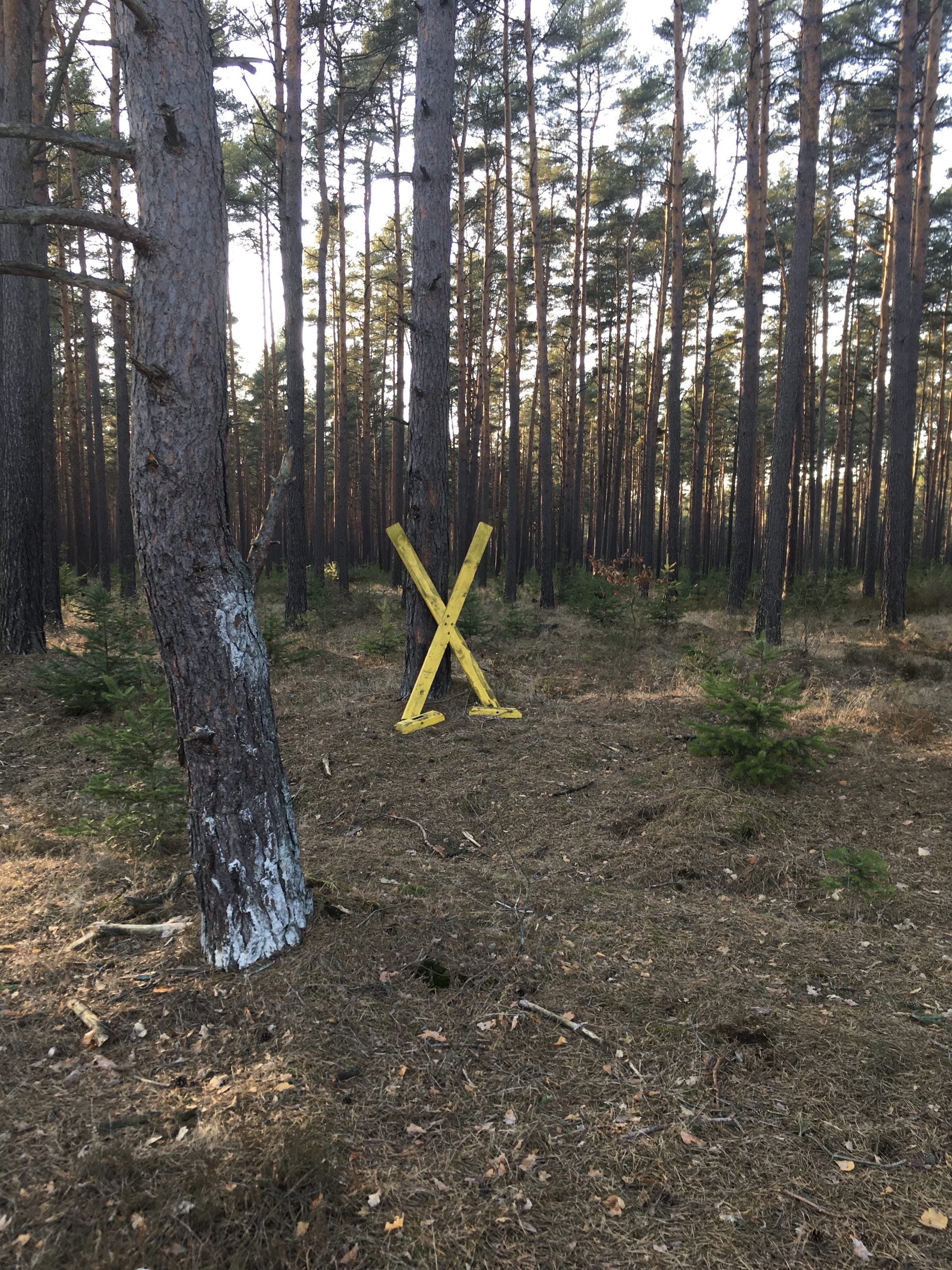 19 excursion wendland