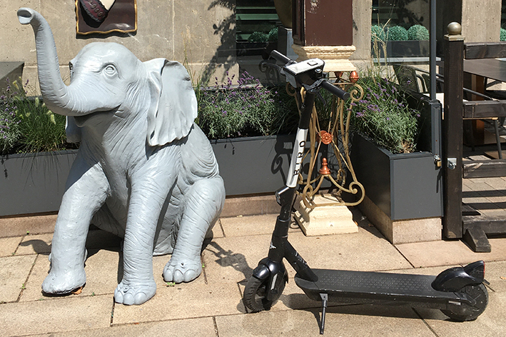 Frankfurt ivory club elefant und e scooter